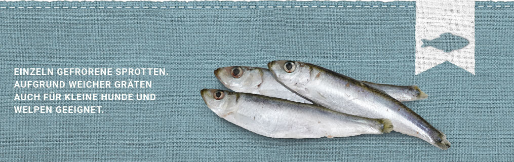 Graf Barf Fisch
